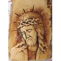 Isus scoarta